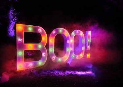 bespoke-light-up-marquee-letters-for-hire-vowed-amazed-2
